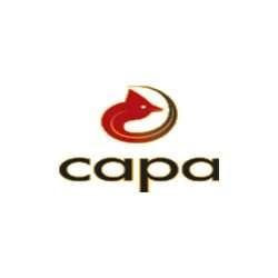 Carolina Asphalt Pavement Association